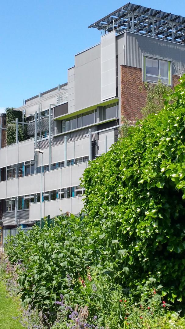 Bureaux neufs à Montreuil