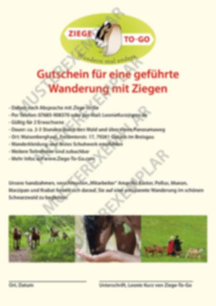 ZTG_Gutschein_Musterexemplar.jpg