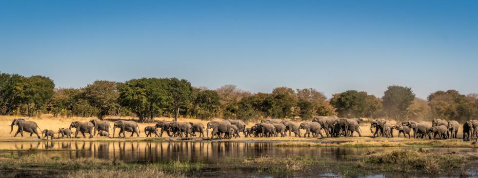 Hwange NP, Zimbabwe