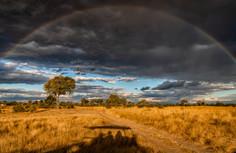 Hwange Park, Zimbabwe