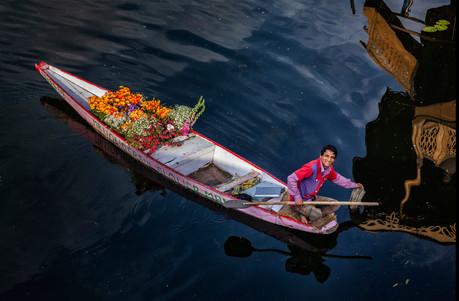 Mr. Wonderful Flower Man, Kashmir