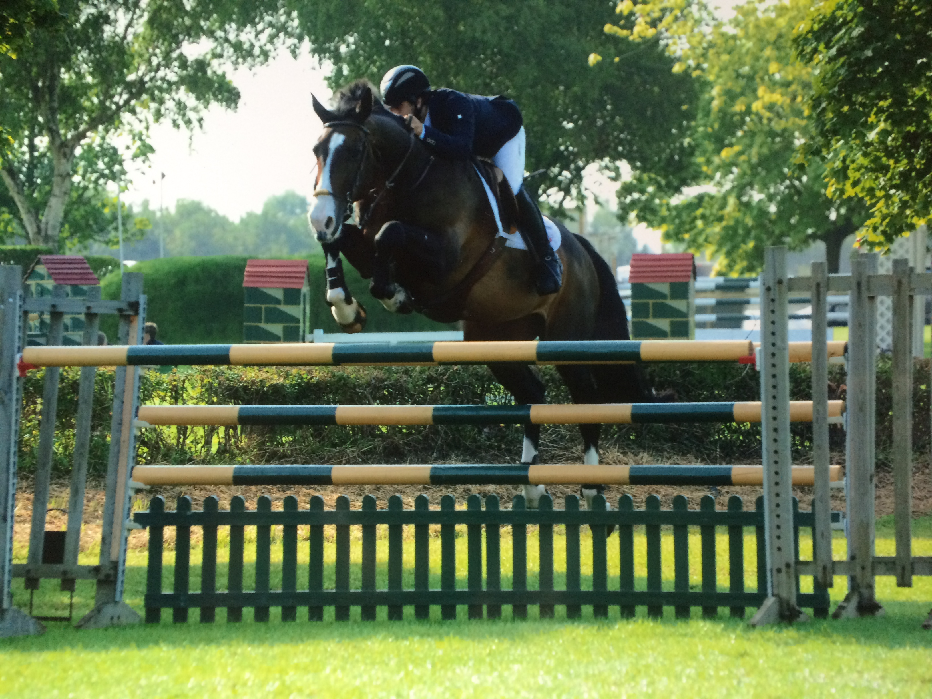 Bobby Socks at Hickstead