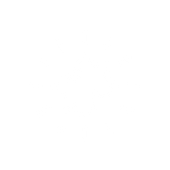 noun_solution_1938692.png