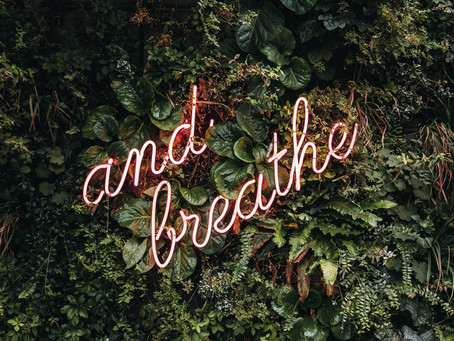 WHY YOU NEED TO LEARN BREATHWORK