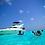 Sea Ray 42' Tulum Yachts