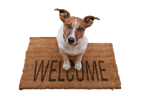 welcome hond.png