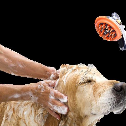 hond wassen.png