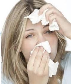 allergie.png
