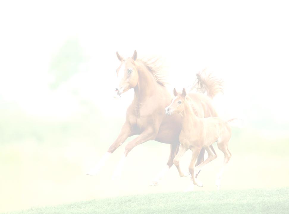 bleek paard met veulen.png