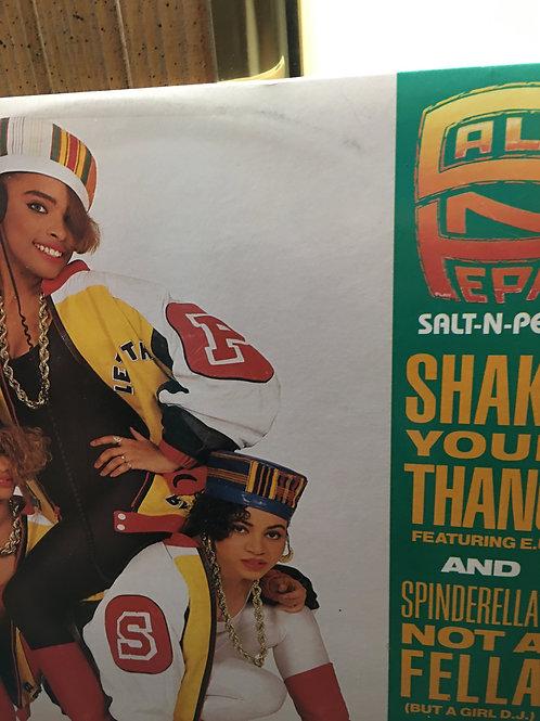 SaltNPepa(Shake Your Thang)