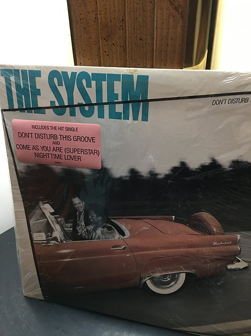 The System(Don't Disturb This Grove)