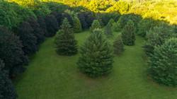 drone gorgeous fields 47 Davis Hill Road, Weston CT-25