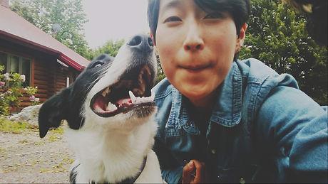 border collie mix, farm dog, dog selfie