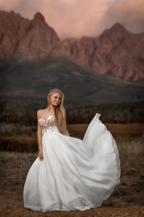 Beautiful bride in her wedding dress on her wedding day standing in the in front of the Helderberg Mountains on the well-known Lourensford Wine Estate, Somerset West, Cape Town. Edited with Brown Autumn colours.
