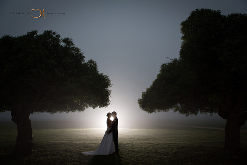 Beautiful bride in her wedding dress on her wedding day taking a moment with her husband on a misty evening between two large trees.