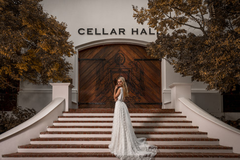 Beautiful bride in her wedding dress on her wedding day in front of the cellar of the well-known Lanzerac Wine Estate in Stellenbosch, Cape Town. Edited with Brown and Autumn colours.