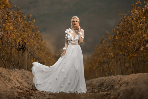 Beautiful bride in her wedding dress on her wedding day between the vineyards of the well-known Lanzerac Wine Estate in Stellenbosch, Cape Town. Edited with Brown and Autumn colours.