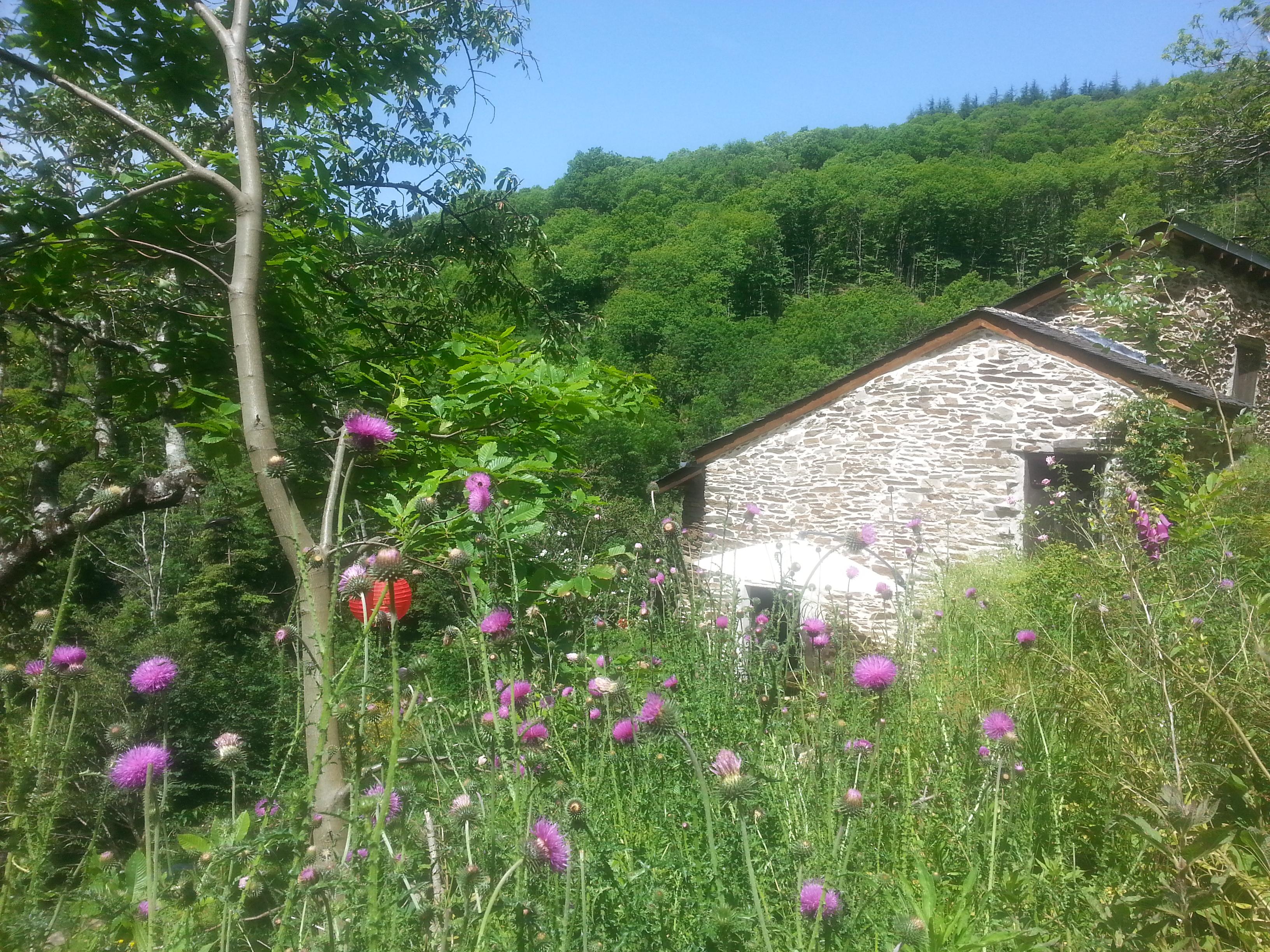 Le Travès, Lespinassière, Languedoc