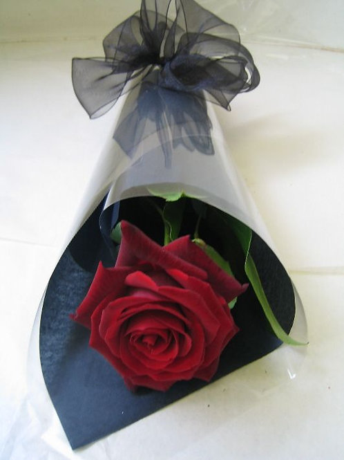 WRAPPED SINGLE RED ROSE