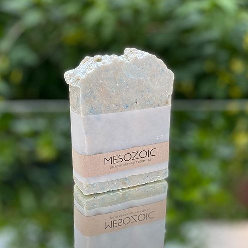 MESOZOIC PREMIUM SOAP