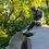 Thumbnail: Pin Soviet Russia Memorial Girl With Jug
