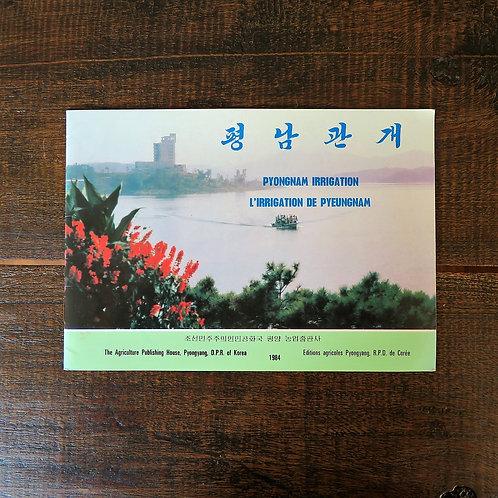 Book North Korea General Pyongnam Irrigation 1984