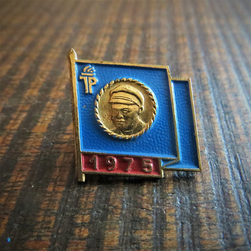 Pin DDR Pin Young Pioneers Blue Flag 1975