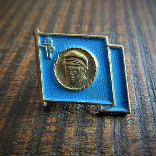 Pin DDR Pin Young Pioneers Blue Flag