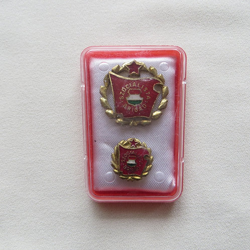 Pin Hungary Socialist Workers Brigade Pin Bronze Edition