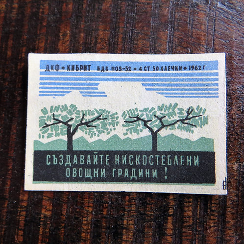 Matchbox Label Soviet Russia Nature Trees 1962