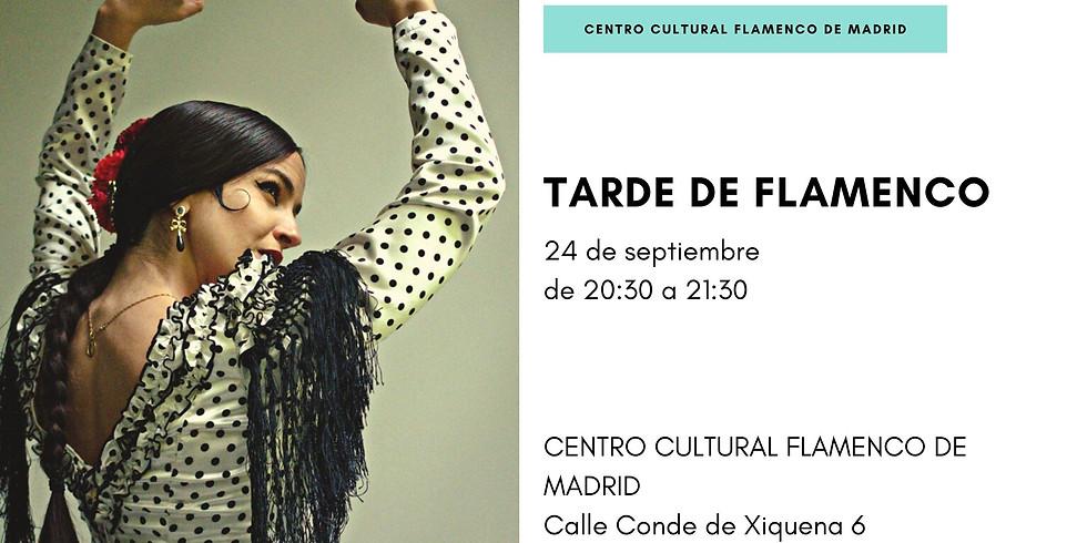 Tarde de flamenco