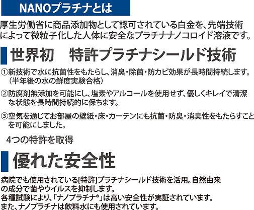 ナノ説明.jpg