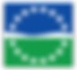 PMI Hampton Roads Chapter logo