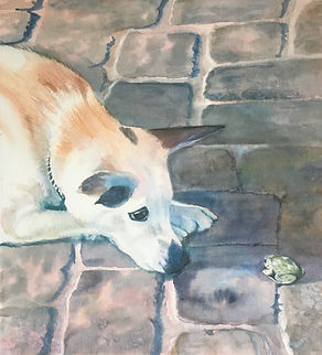 Dog and Toad