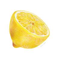 Lorin_Cinar_Mixed_Media_Half_Lemon_Small