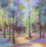 Whitefish Dunes Path.  16x16.jpg