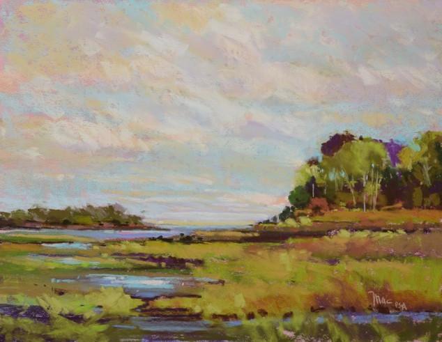 Lake Michigan Marsh (DONATED)