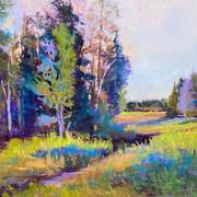 The Birding Trail, Pastel - 18x24 (24x30)