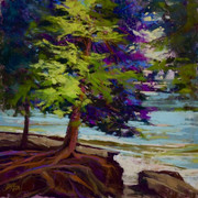 Cedars at Cave Point, Pastel (11x11)