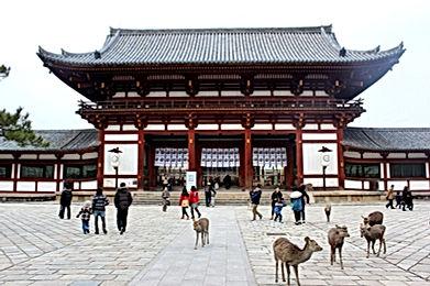 Nara-Park.jpg