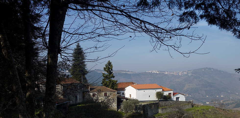 LADO - Quintas - Quinta da Prelada.jpg