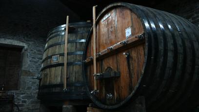 Quinta das Lamelas - Douro - Vindima - Harvest - barrel - tonel - barrica - balseiro