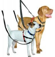 Halti Training Dog Harness Small