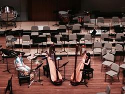 harp duo concert at ayo.jpg