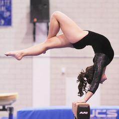 New Heights Gymnastics