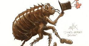 Remède naturel contre les puces, les tiques et autres moustiques !
