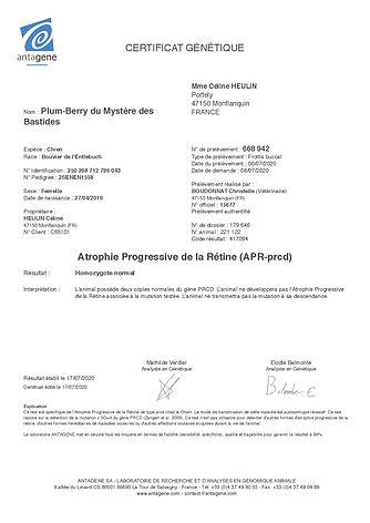 APR 417094-1-fr.jpg