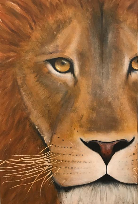 Y U ALWAYS LION