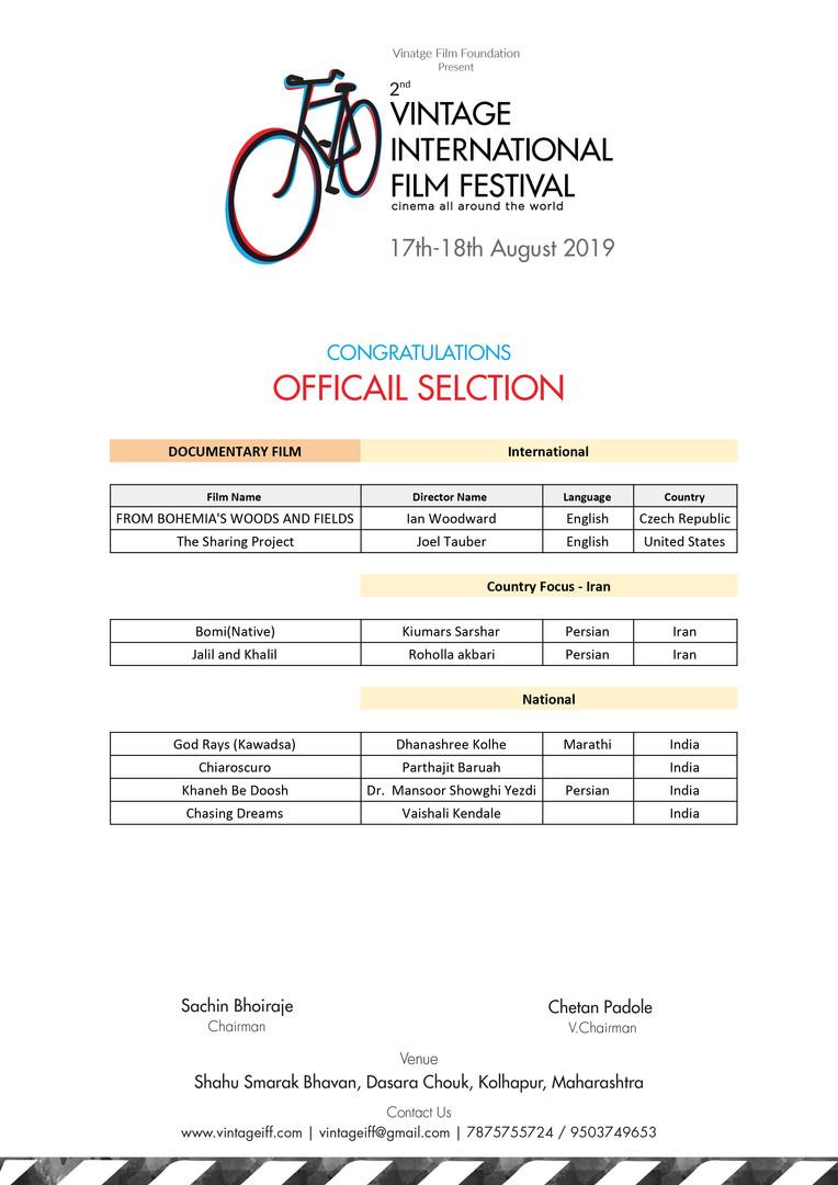 VIFF Selection 1.jpg