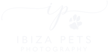Ibiza Pets 2 - white2.png